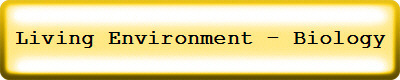 Living Environment - Biology