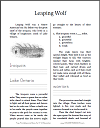 Leaping Wolf of the Iroquois and French Settlers in America Workbook