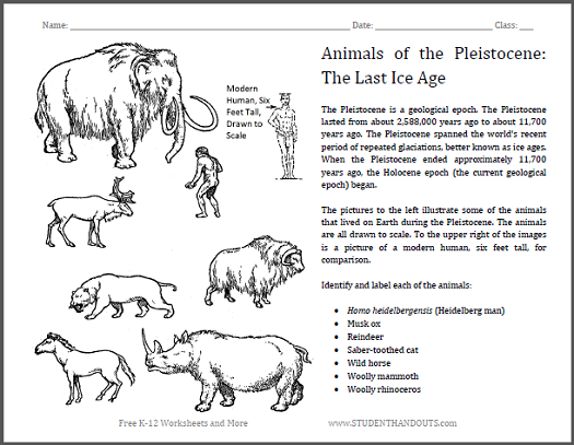 Pleistocene Epoch Animals Worksheet - Free to print (PDF file).