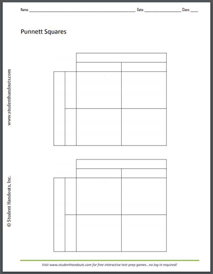 Monohybrid Cross Punnett Square Worksheet Student Handouts