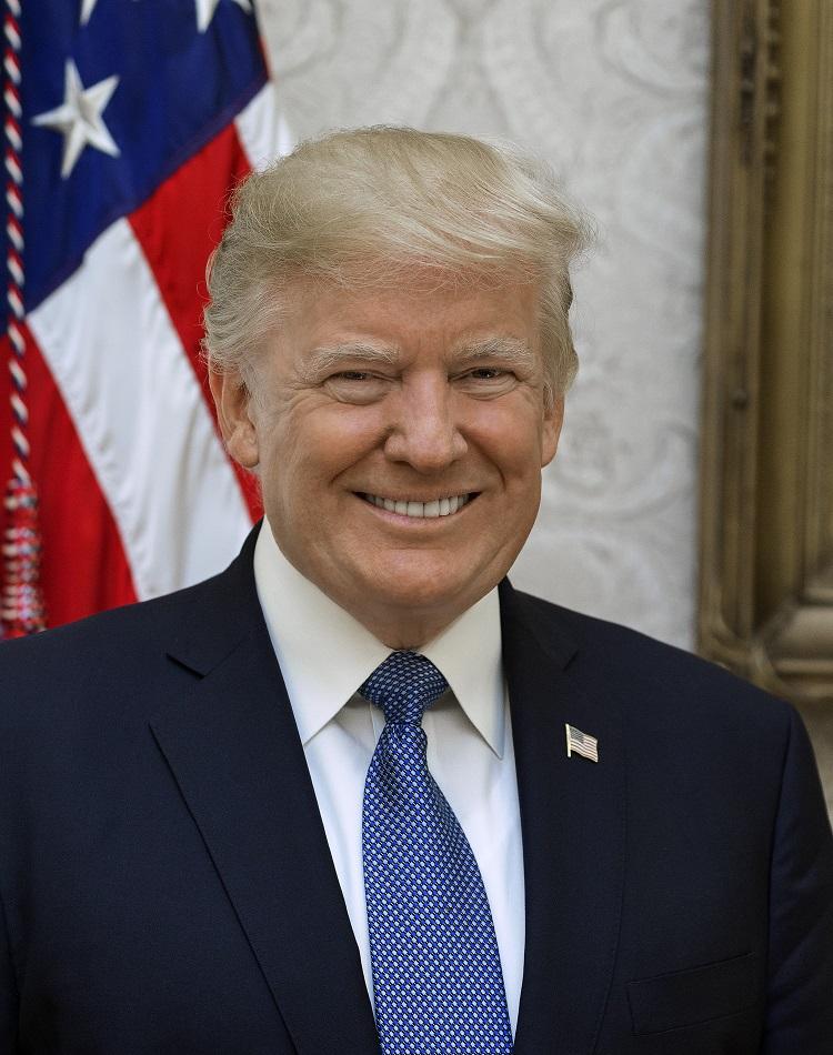 President Donald Trump Official Portrait (2017)