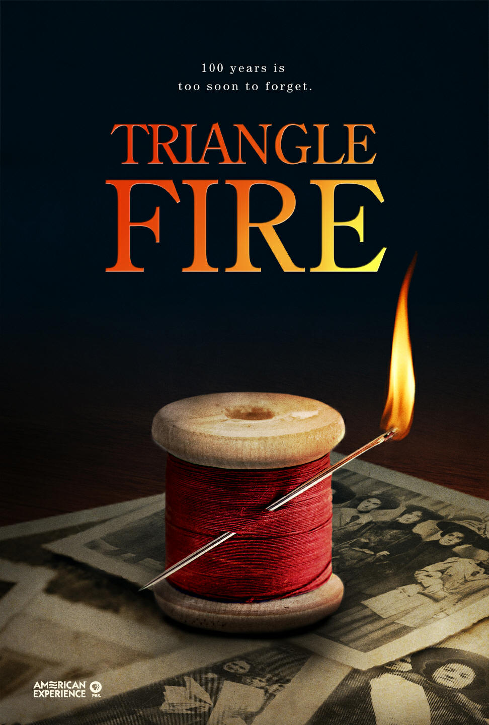 Triangle Fire (2011) - Video Guide and Review for History ... Triangle Shirtwaist Fire Book