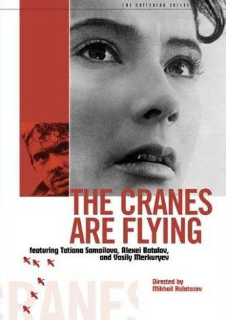 The Cranes Are Flying (1957) - Movie Review for History Teachers