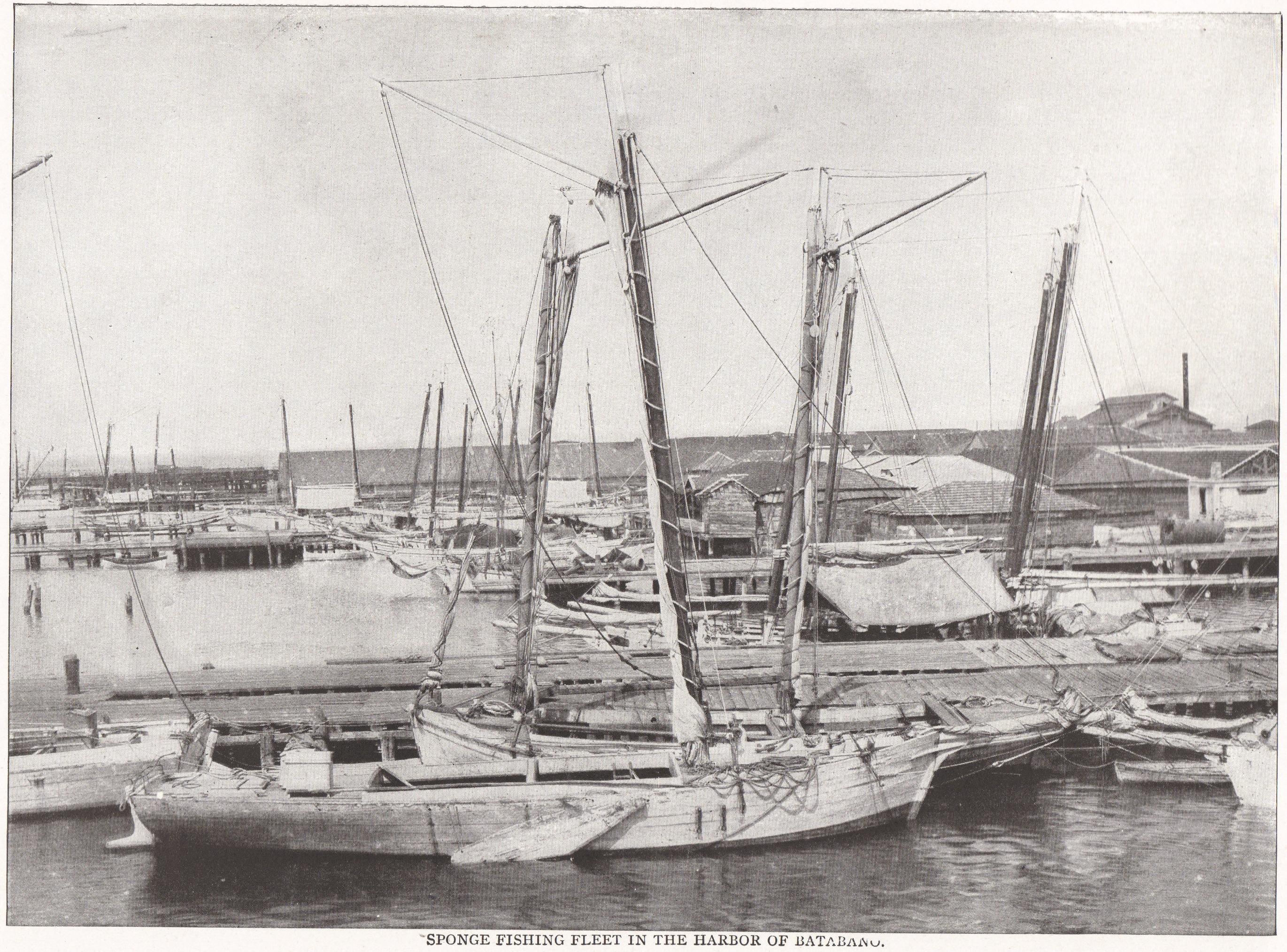 SPONGE FISHING FLEET IN THE HARBOR OF BATABANO (Cuba, 1898)