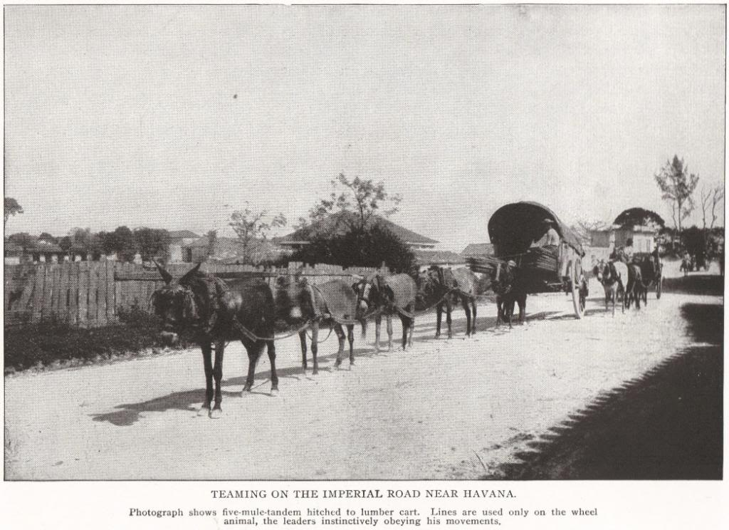 Imperial Road near Havana, Cuba (1898)