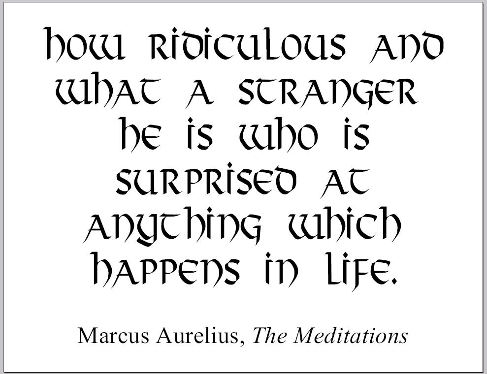 Marcus AURELIUS: How ridiculous and what a stranger he is who is surprised at anything which happens in life.