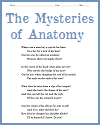 The Mysteries of Anatomy
