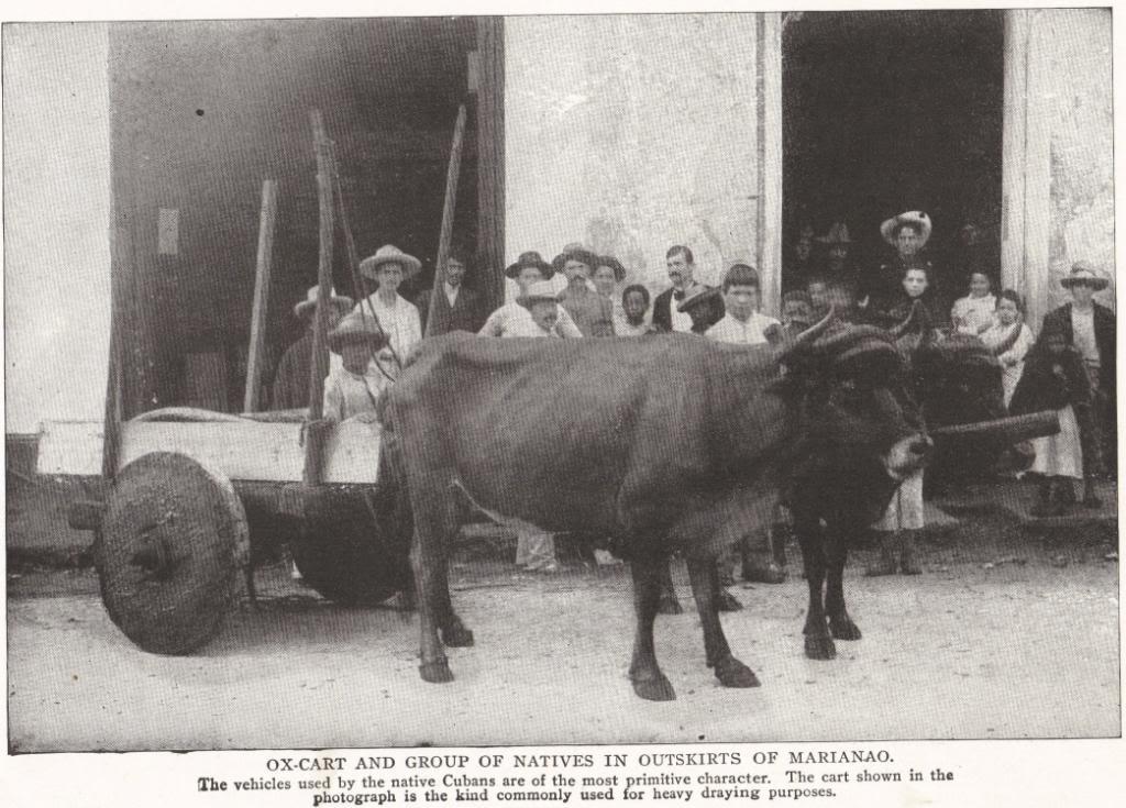 Cuban Ox-Cart, 1898
