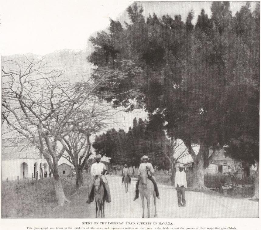 Havana's Imperial Road in 1898 (Cuba)