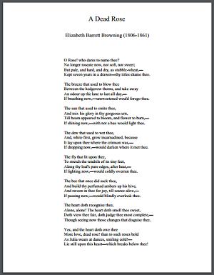 """A Dead Rose"" by Elizabeth Barrett Browning"