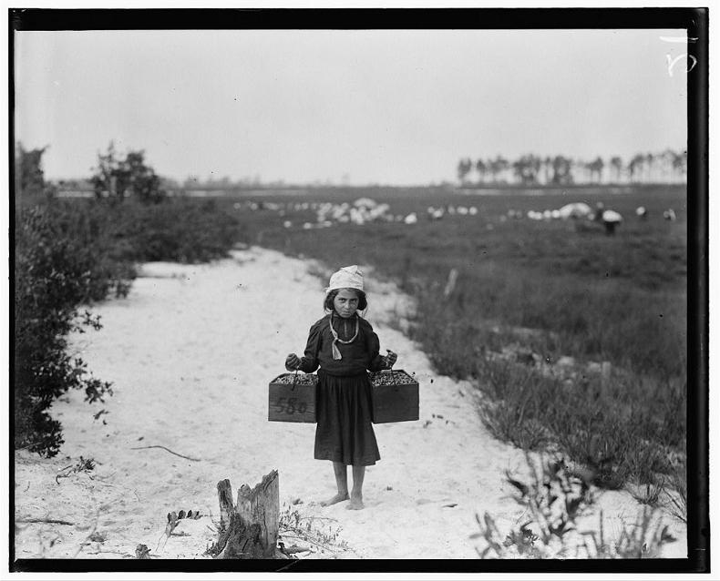 Child Farm Laborer in New Jersey, USA (1910)