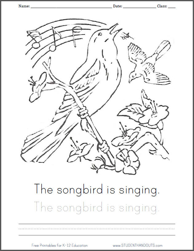 types of birds coloring pages - photo#16