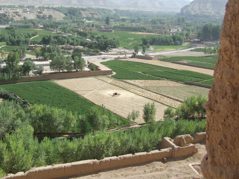 Afghani Farmlands