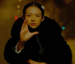 The Grandmaster (2013) Film Review and Guide