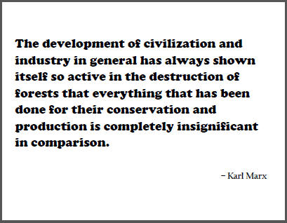 """""""The development of civilization and industry in general has always shown itself so active in the destruction of forests that everything that has been done for their conservation and production is completely insignificant in comparison,"""" Karl Marx."""