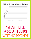 What I Like About Tulips Writing Prompt