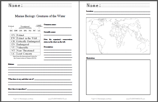 Marine Biology Fact Sheet - Free to print for Science students in grades four through twelve.