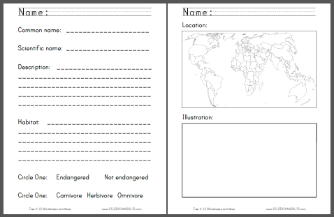 Monkey Around Project - Worksheets are free to print (PDF files) for lower elementary Science students.