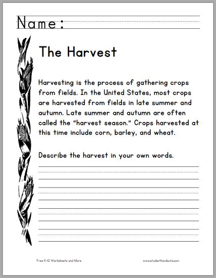 Harvest Season Primary Worksheet - Free to print (PDF file).