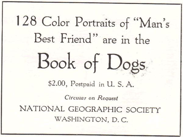 """Man's Best Friend"" Book of Dogs"