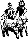 prize lamb