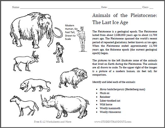 Pleistocene Epoch Animals Worksheet - Free to print (PDF file).