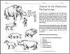 cenozoic animals coloring pages - photo#26
